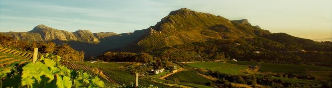 Beau Constantia Wine Farms | Constantia Valley